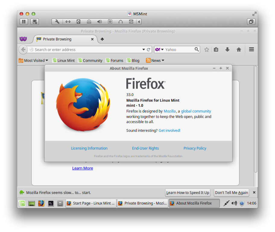 FF Linux About